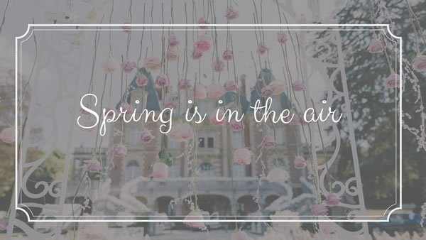 Spring is in the Air Offer